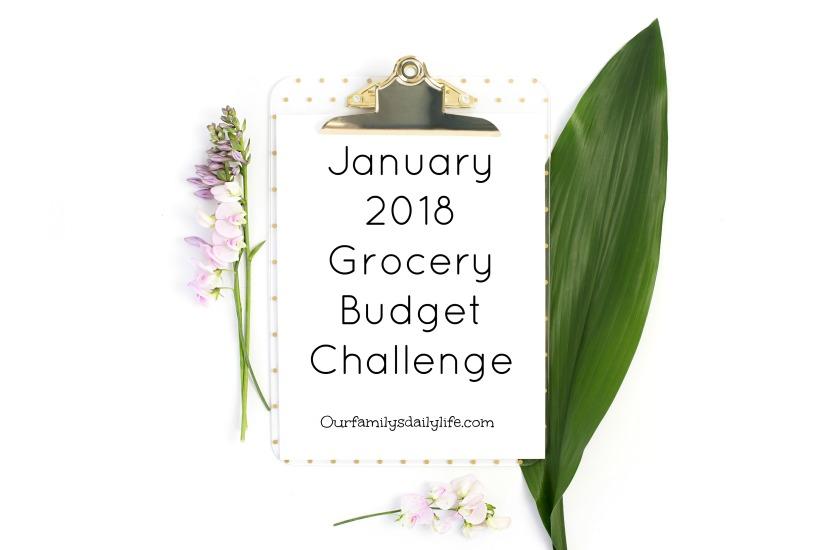 jan budget challenge 2018