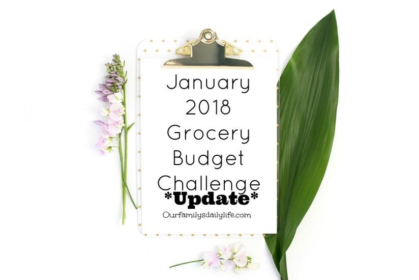 jan-budget-challenge-2018 update