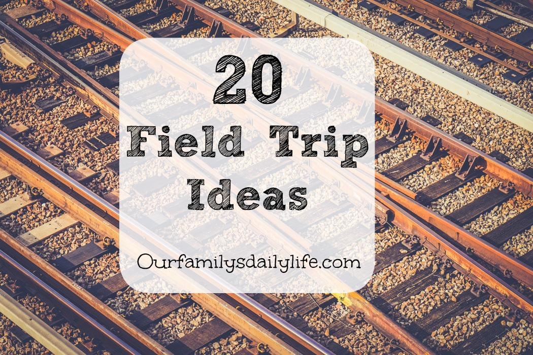 20 field trip ideas