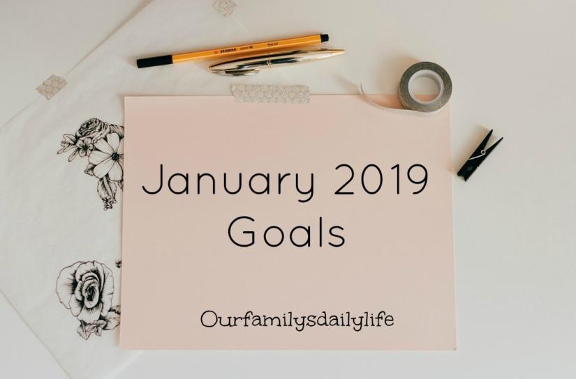 january 2019 goals