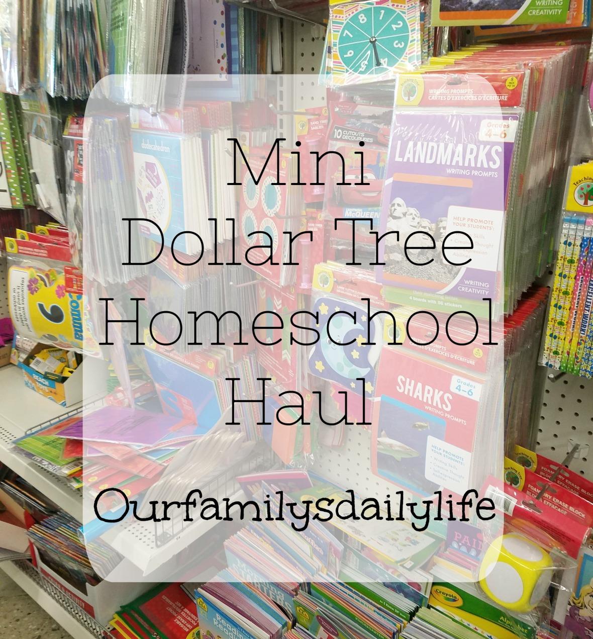 Mini Dollar Tree Homeschool Haul